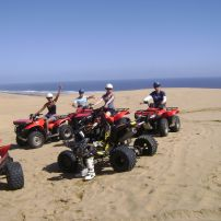 1-1/2 hr Tour of Ninety Mile Beach