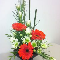 Asymmetrical arrangement