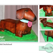Delightful Dachshound