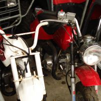 honda xr 50 wanted